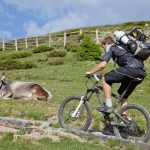 Italia in bicicletta: i più bei percorsi su due ruote
