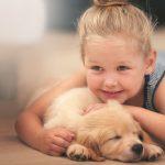 Un cucciolo in arrivo: come preparare la casa per il cane nuovo!