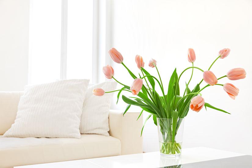 pulizie di primavera come farle